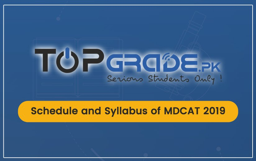 Schedule and Syllabus 2019